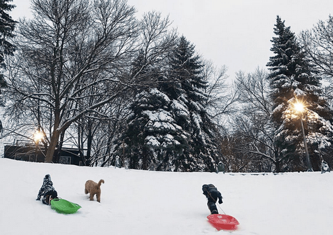 5 things to do in Toronto today: Tuesday, December 13