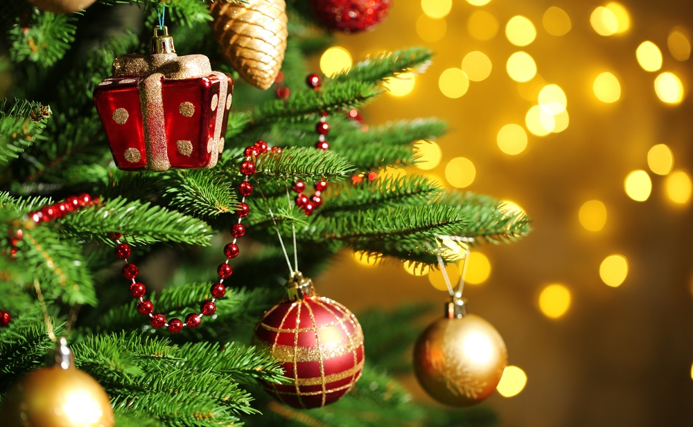Image: Christmas Tree / Shutterstock