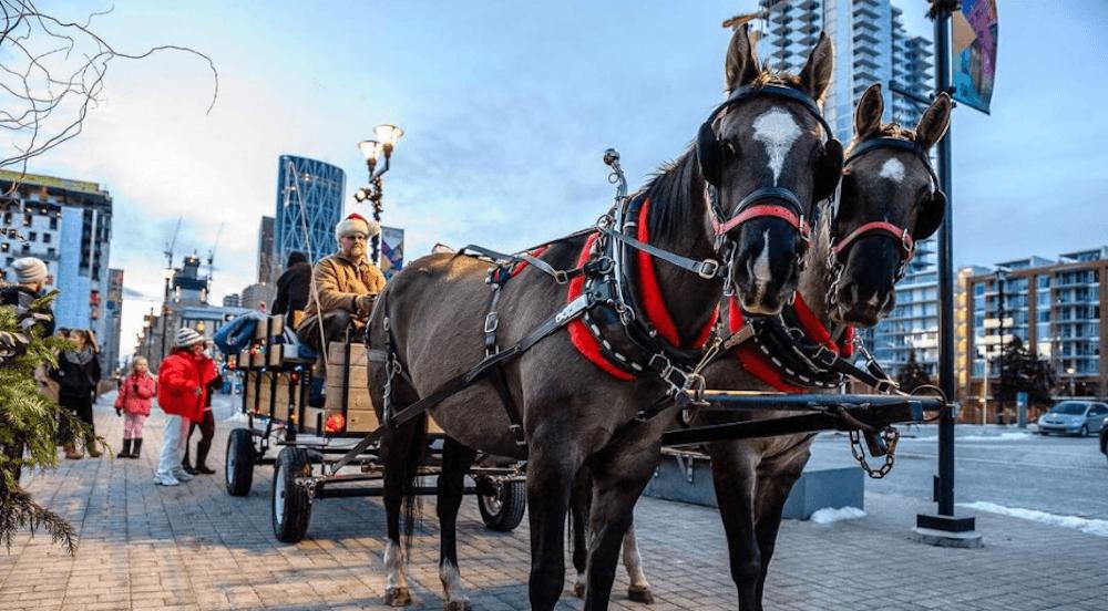 21 photos of Christmas around Calgary