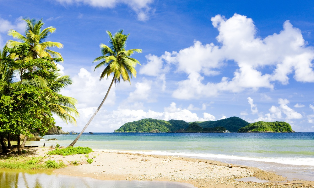 You can fly return from Toronto to Trinidad & Tobago for under $275 this winter