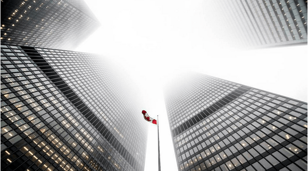 11 cool photos of Toronto covered in fog today