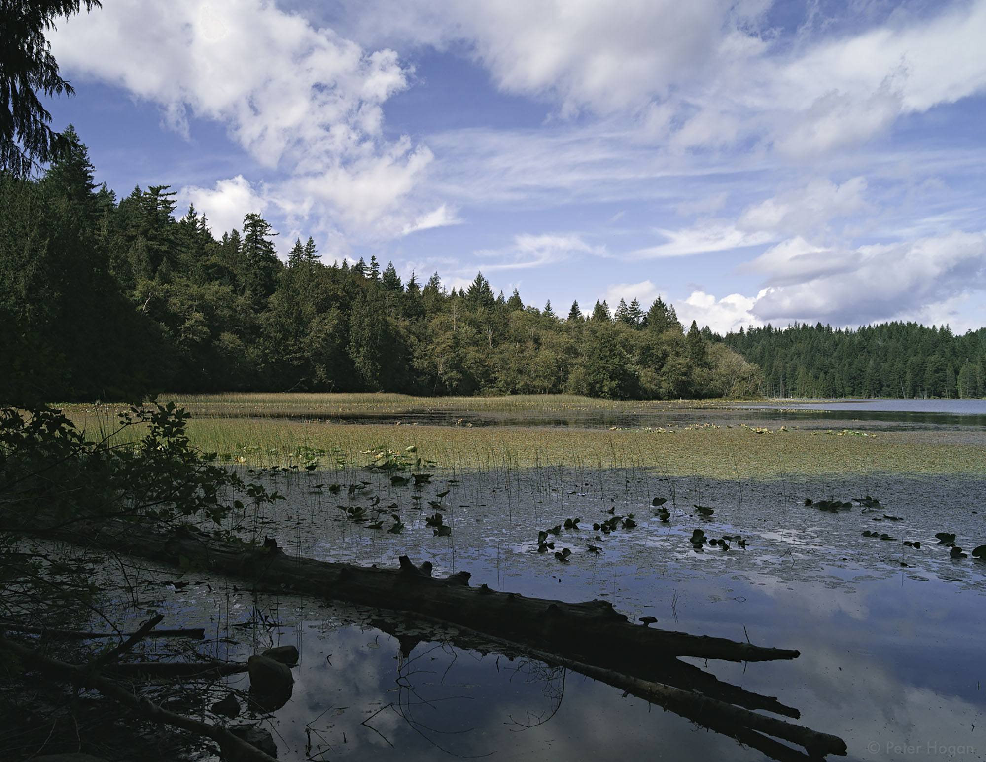 Killarney Lake on Bowen Island, Vancouver (3dpete/Flickr)
