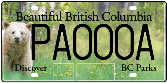 The new BC Parks licence plate featuring a Kermode bear (ICBC)
