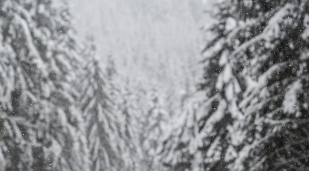 Snowfall warning: Up to 10 cm of snow expected in Kananaskis and Canmore