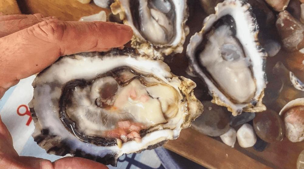 Ronbat island oysters