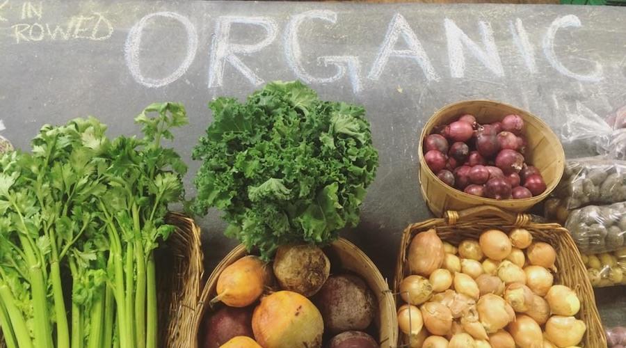 Produce symons valley ranch market calgary