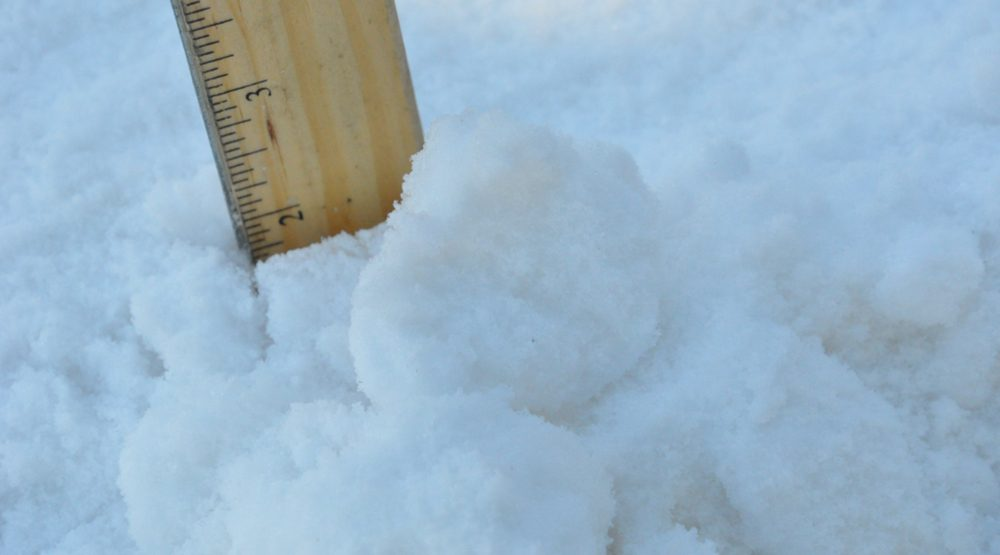 This is how much snow fell in Metro Vancouver Friday afternoon