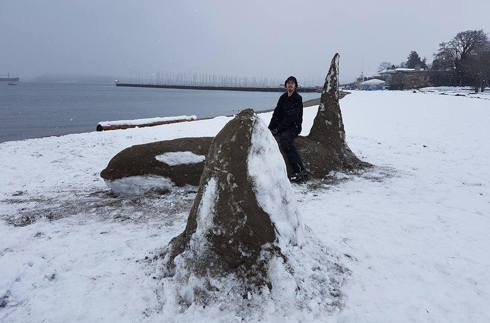Snow orcas on Jericho Beach (Aaron Cambrin/Facebook)