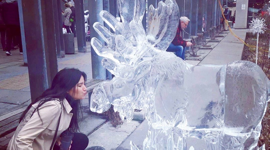 26 great photos from this weekend's Bloor-Yorkville Icefest