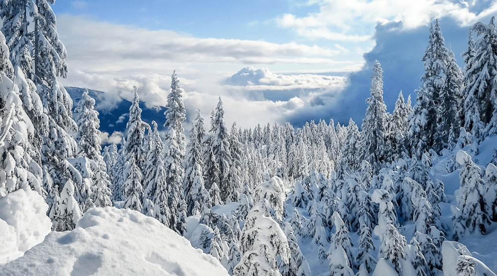 Person buried in Cypress Provincial Park avalanche