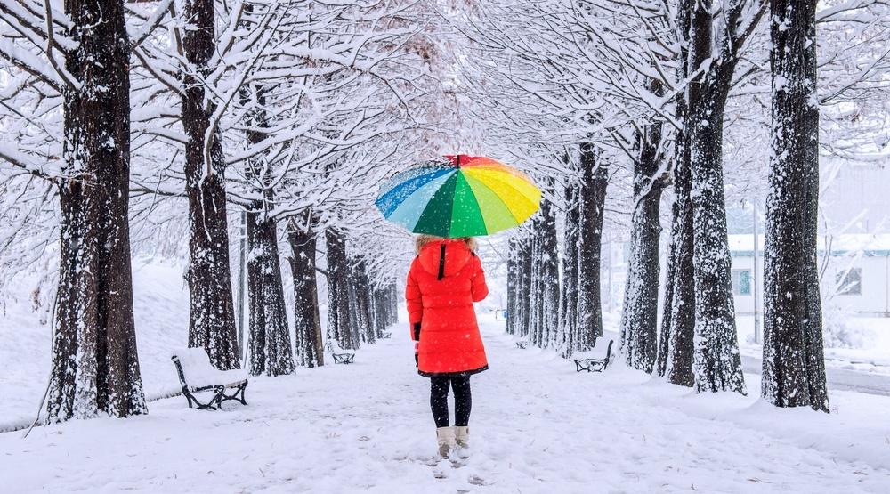 Shutterstock 384113758