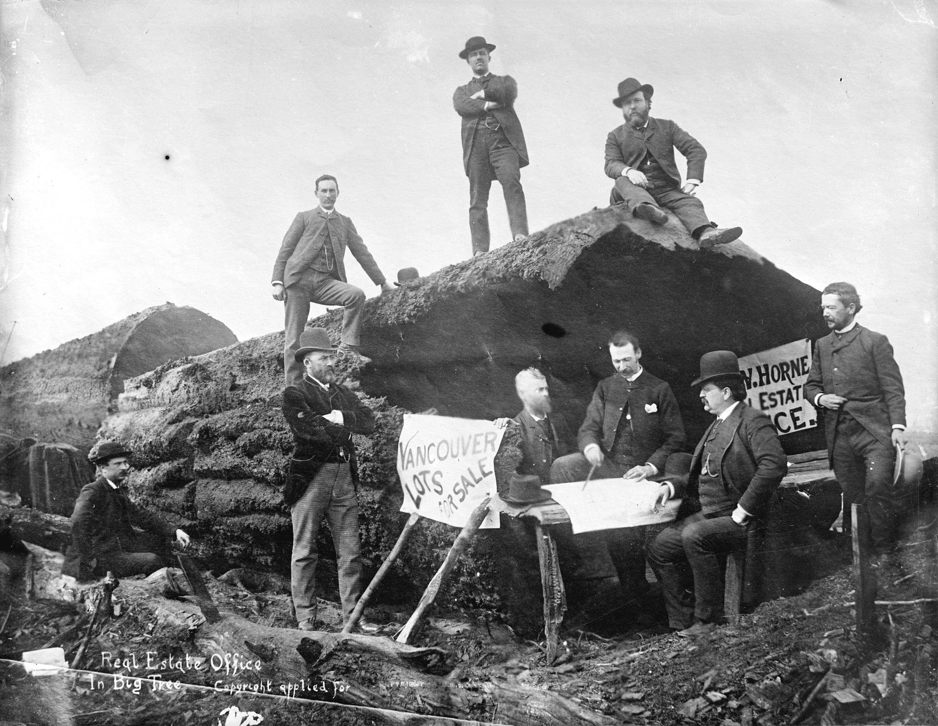 A real estate office set up in a big tree for a promotional event in Vancouver in 1886 (Vancouver Archives)