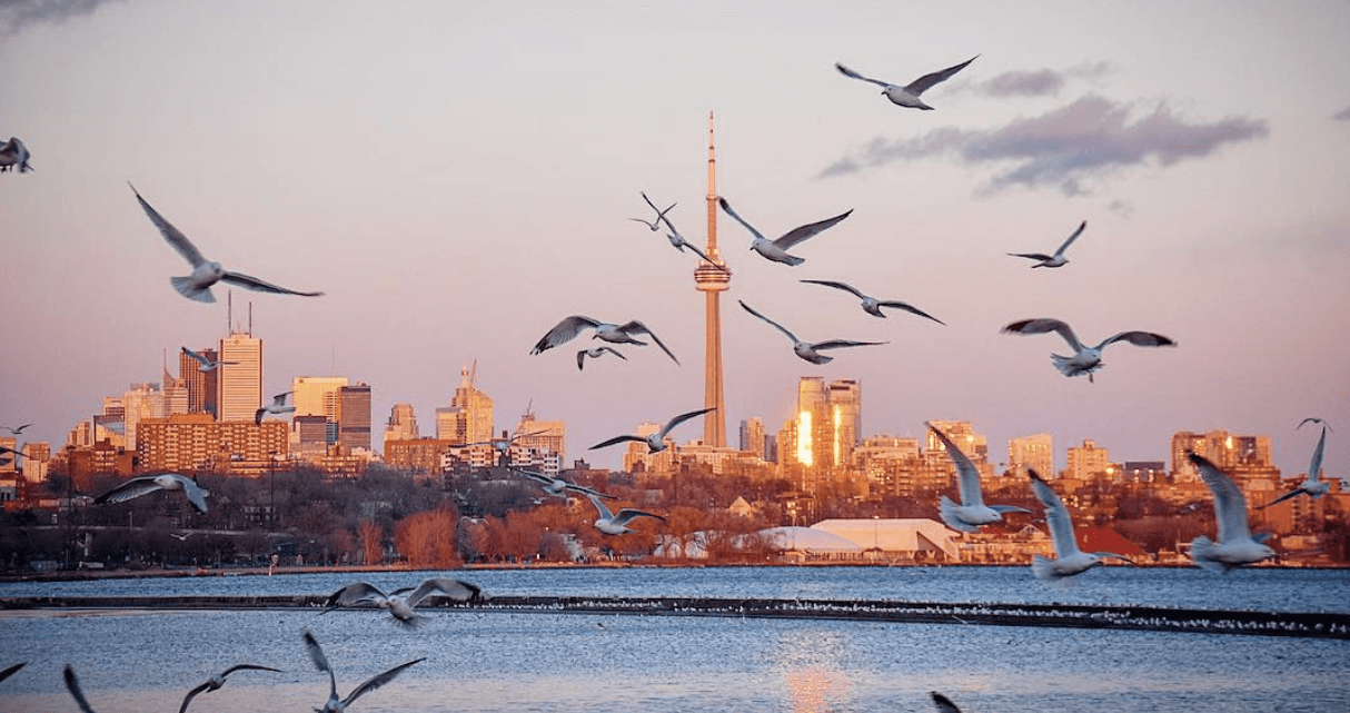 5 things to do in Toronto today: Thursday, March 16
