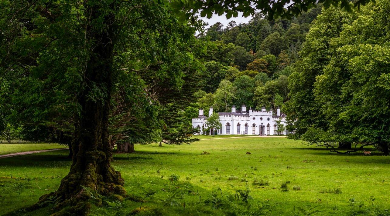 Guinness irish castle 1 1