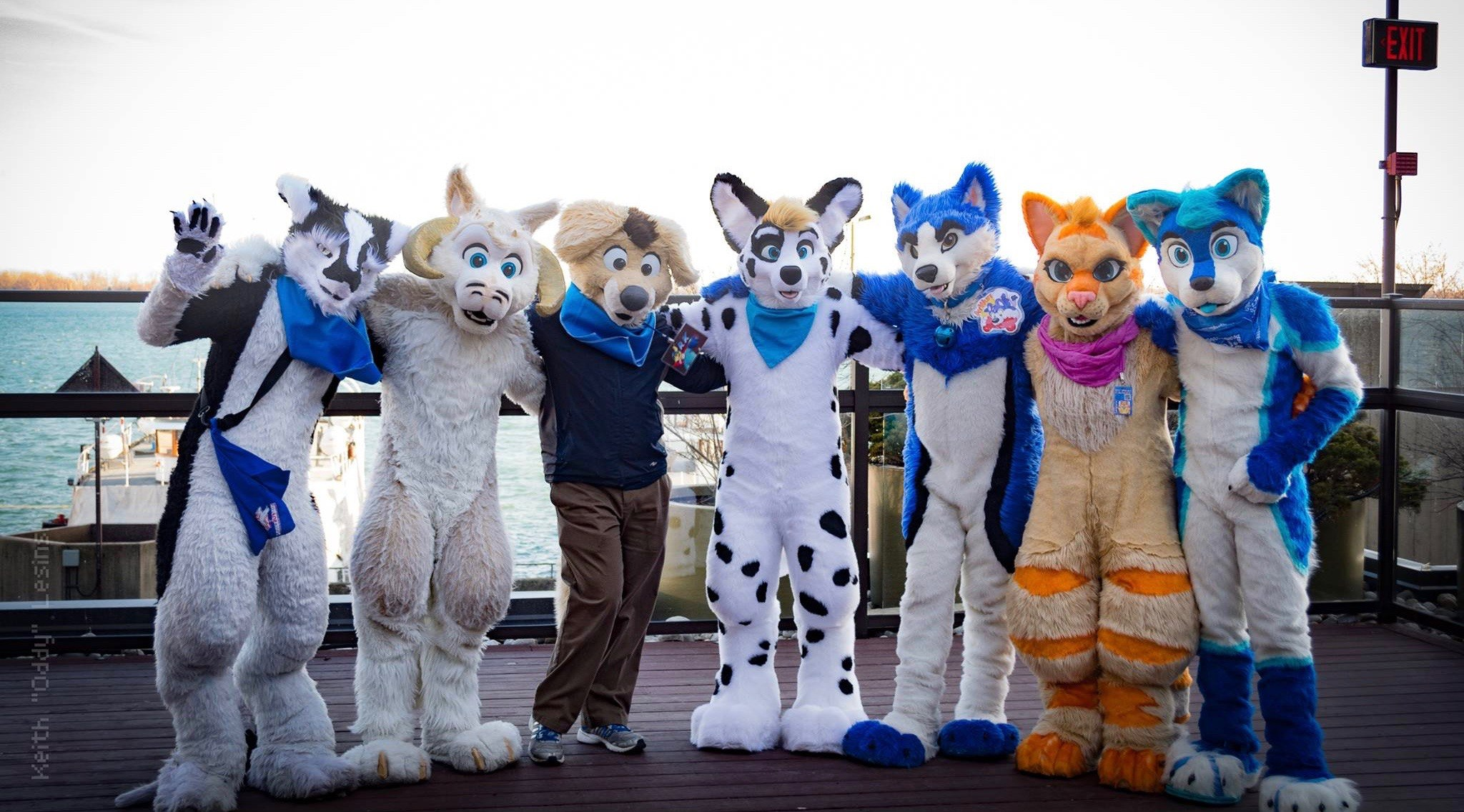 Furry conference