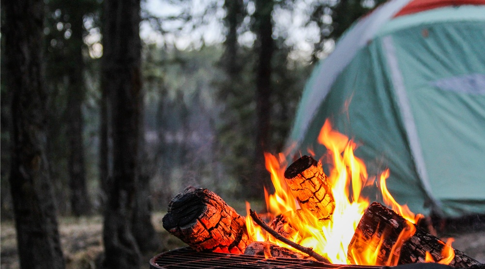 BC Parks website opens for camping reservations, promptly crashes due to demand