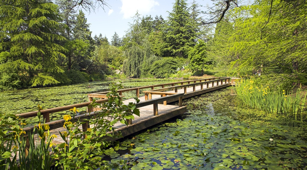 path in botanical garden in vancouver vandusen garden