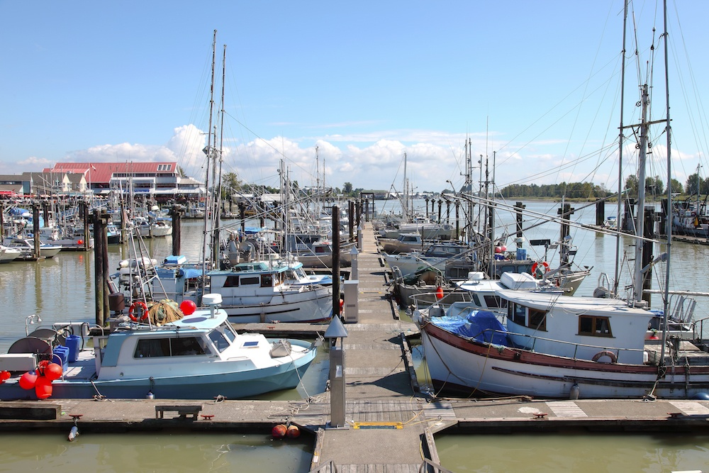 Boats moored at the Steveston port (Rigucci/Shutterstock)