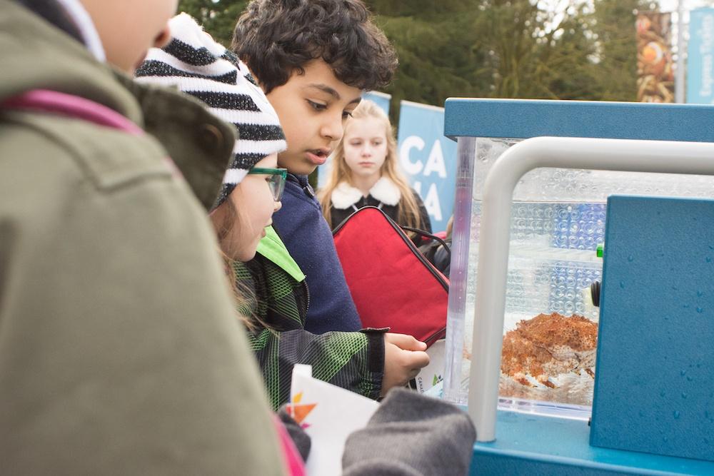 Students looking at a crab from the AquaVan (Vancouver Aquarium)