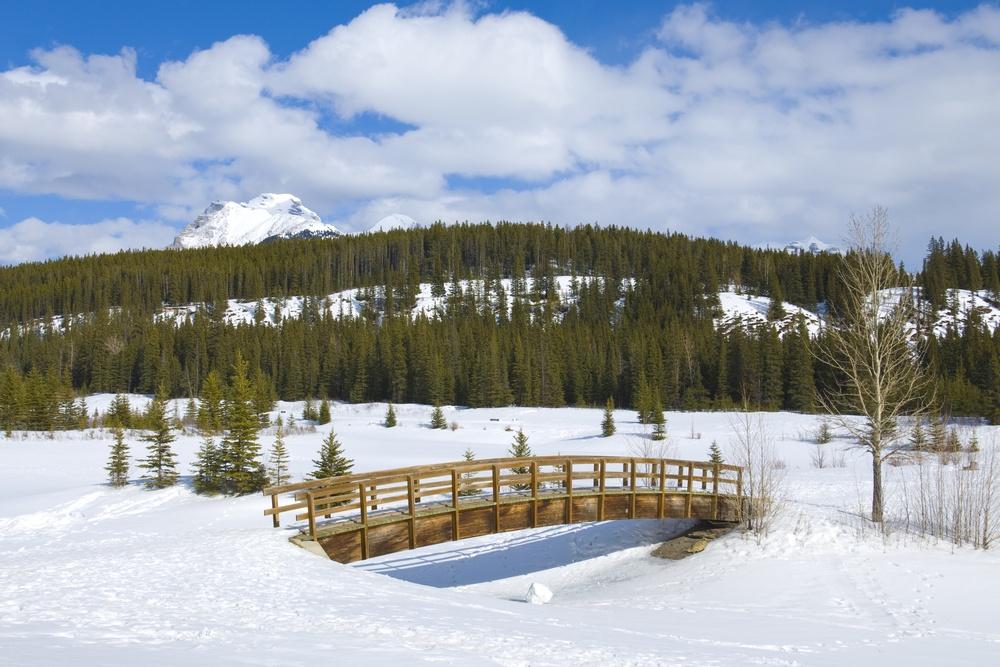 Cascade ponds shutterstock