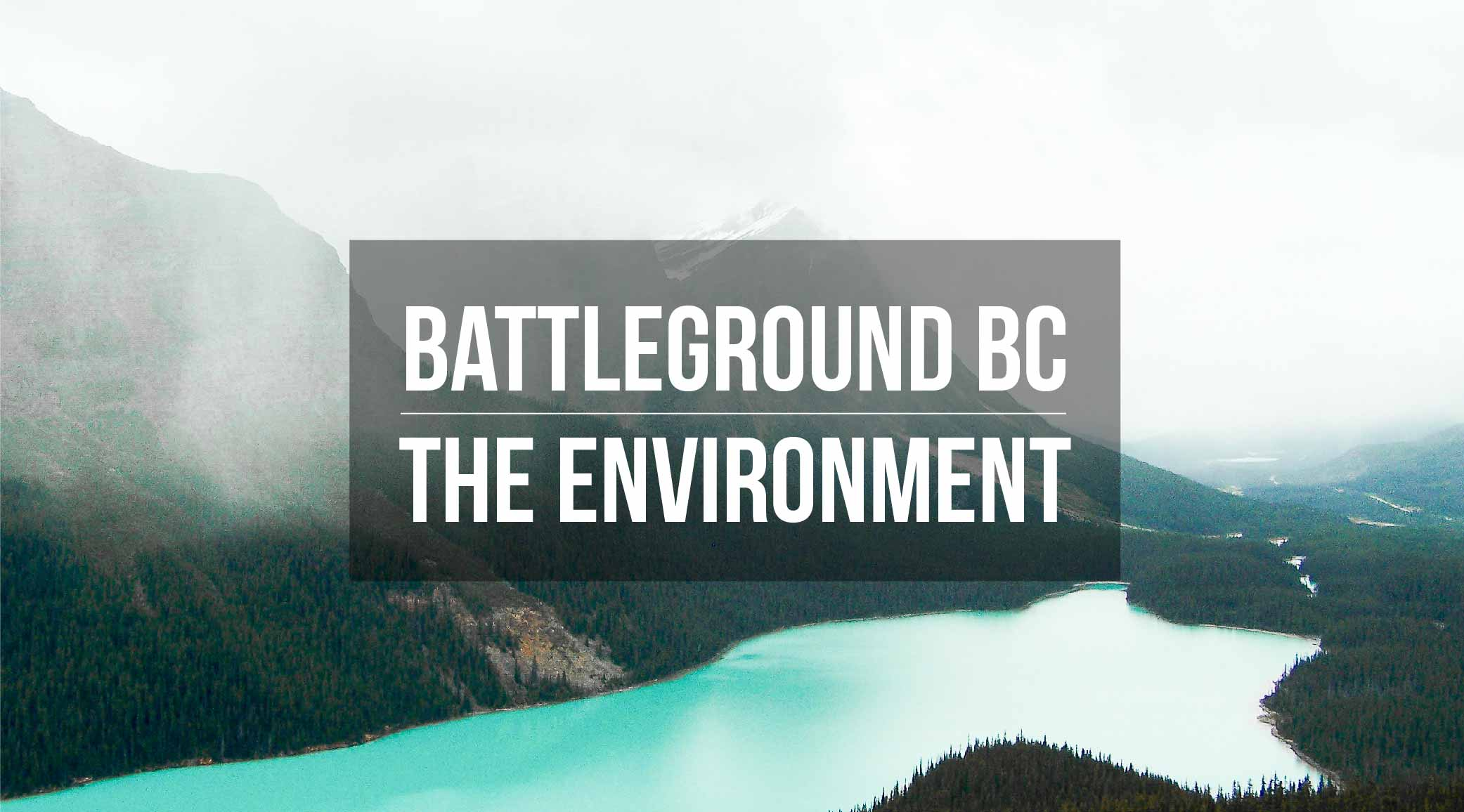 BC Election 2017: Your quick guide to the environment