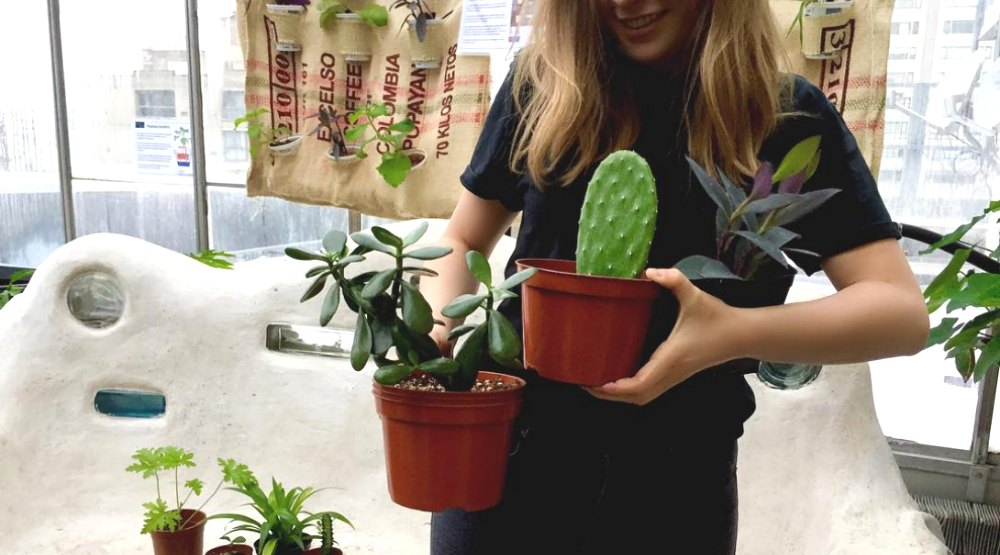 The massive Concordia University plant sale is back