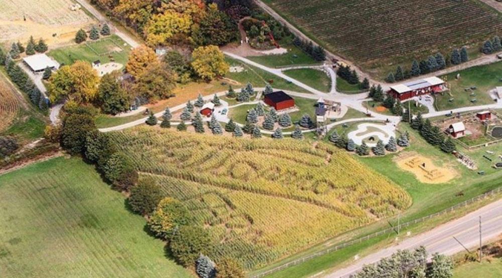Wittamore farm