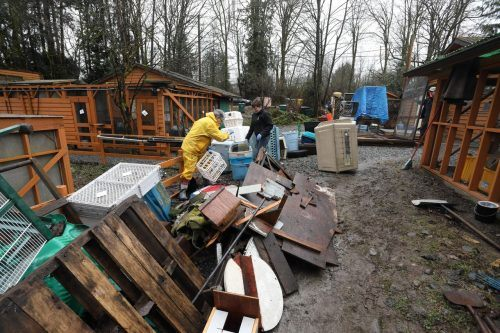 Poor winter conditions have caused damage to the Wildlife Rescue Association (Wildlife Rescue Association of BC)