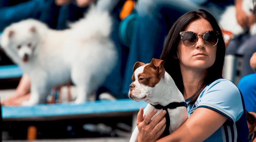 Whitecaps fc 2 dog fan