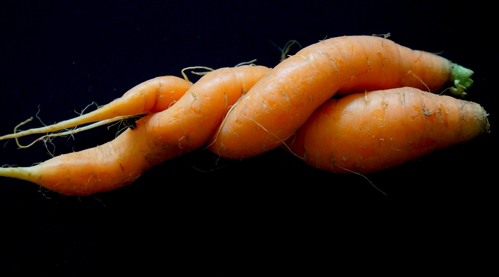 Major Canadian grocery chain asked to #LoveTheUgly fruits and veggies