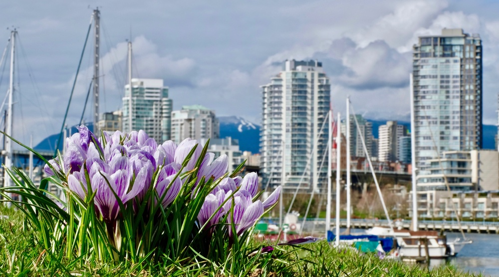 7 things to do in Vancouver today: Thursday, May 4