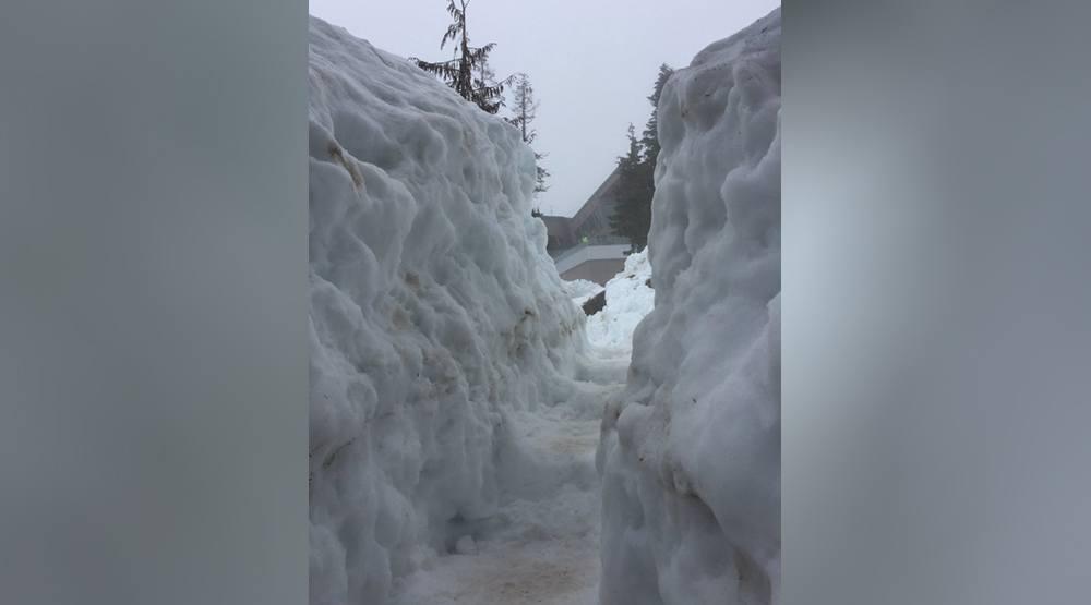 Grouse grind snow