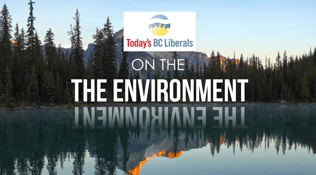 BC Election 2017: BC Liberals and the environment in detail