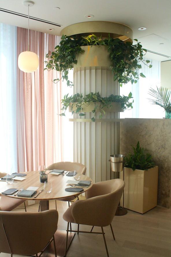 Botanist_interior 8