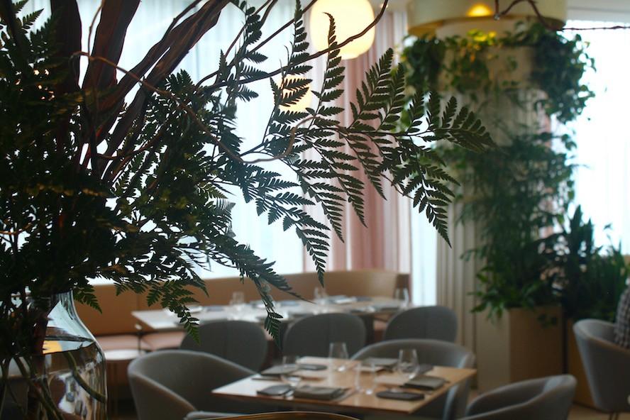 Botanist_interior 3