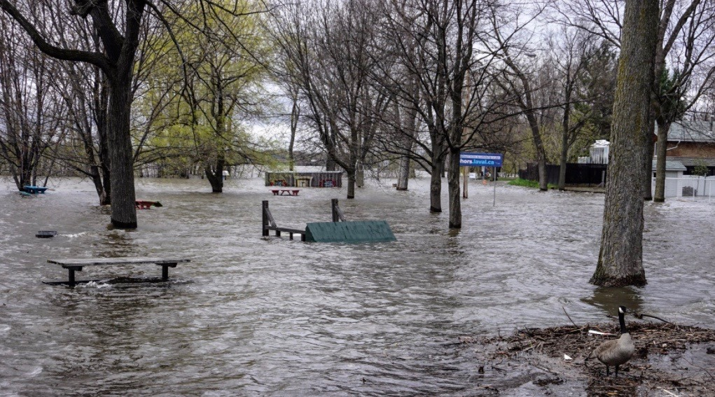 Montreal state of emergency