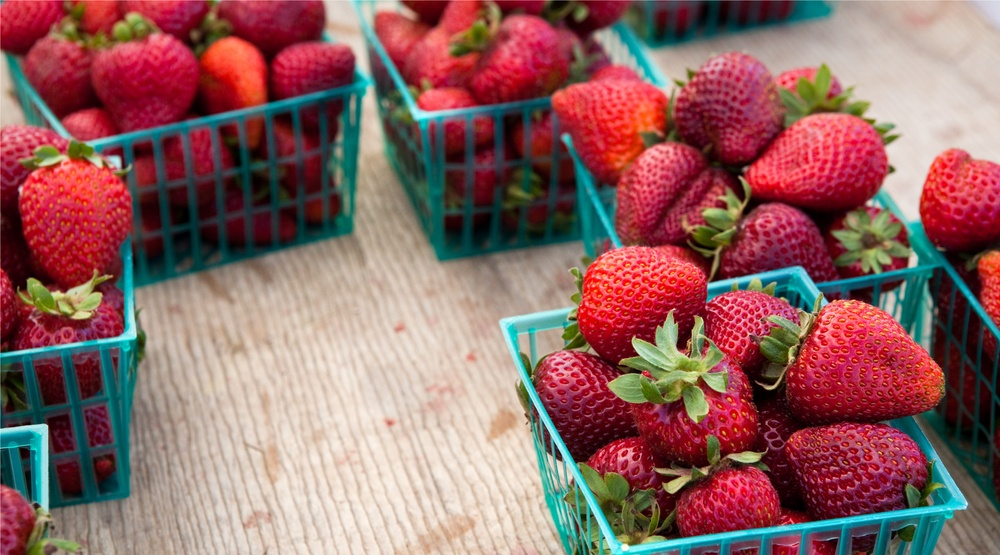 A huge Strawberry Festival is coming back to Toronto next month