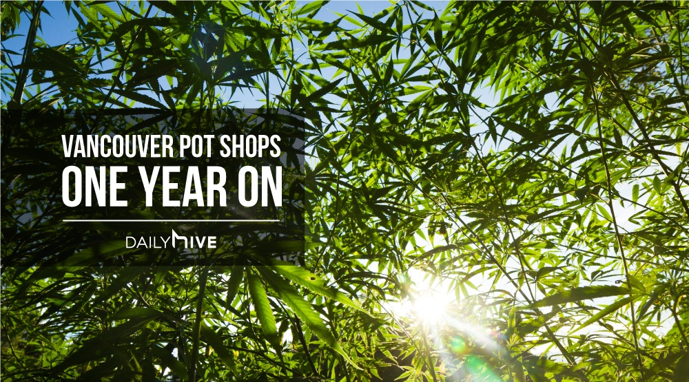 Van pot shops feature image 2