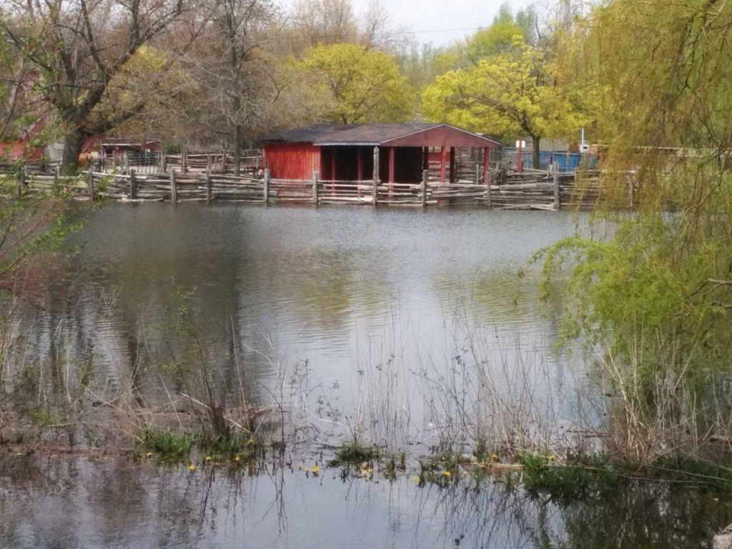 Far Enough Farm flooded