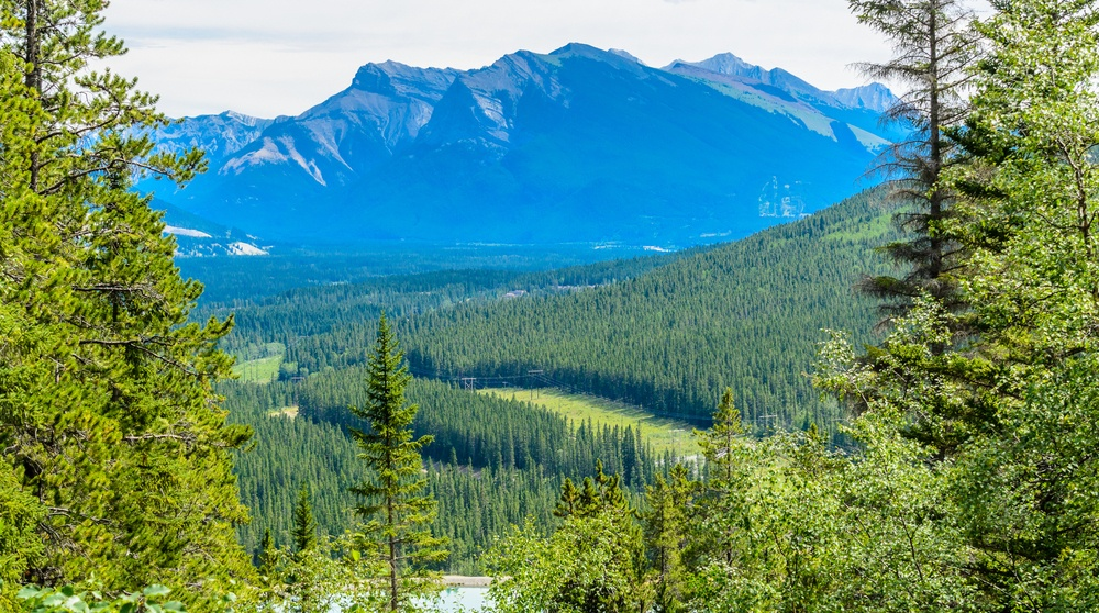 6 Calgary hiking trails with the best views within an hour of the city