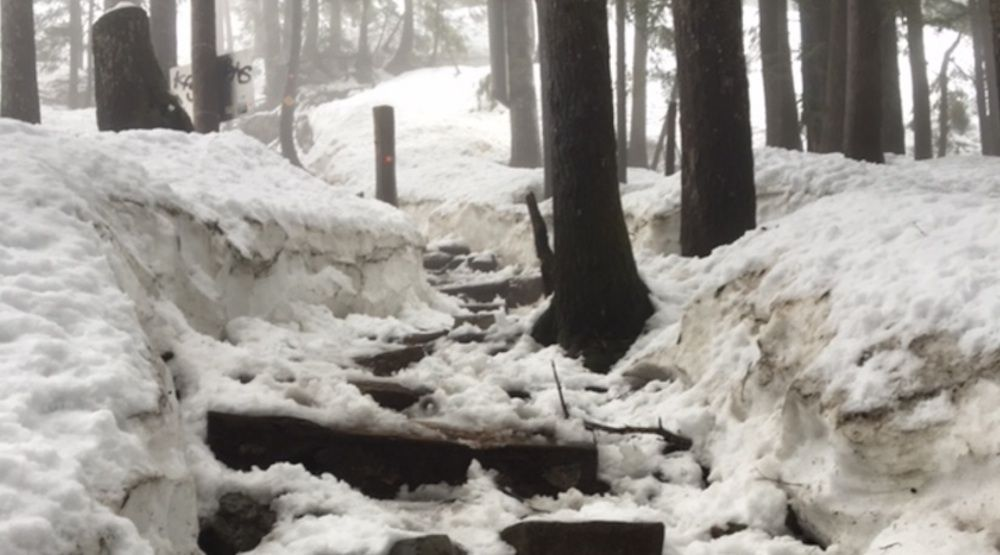 Grouse Grind closed on Monday due to icy conditions