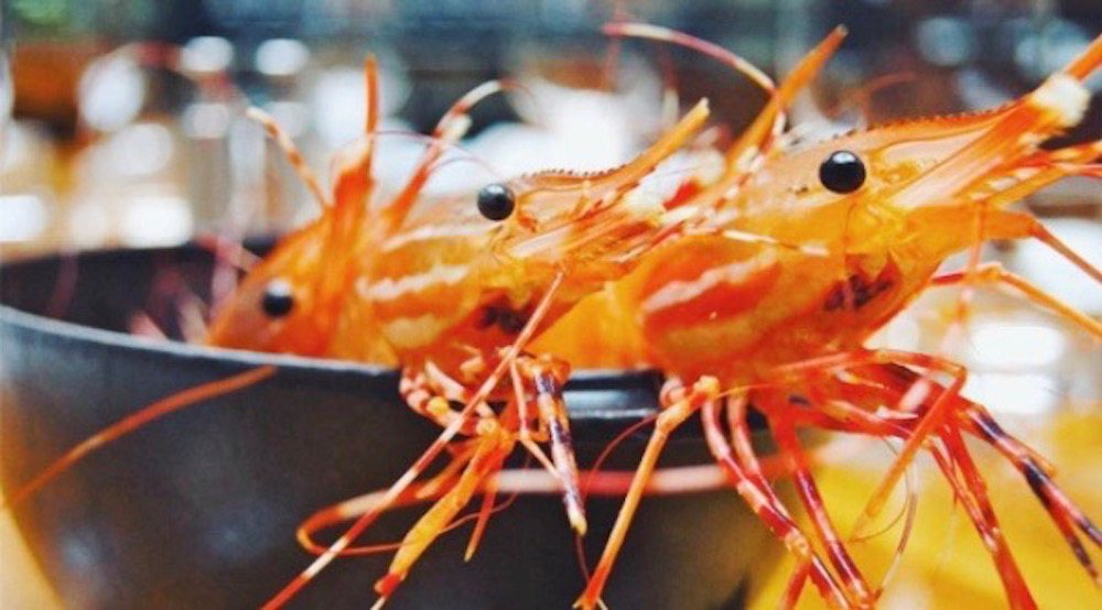 5 feasts and treats in Vancouver to devour during Wild BC Spot Prawn season