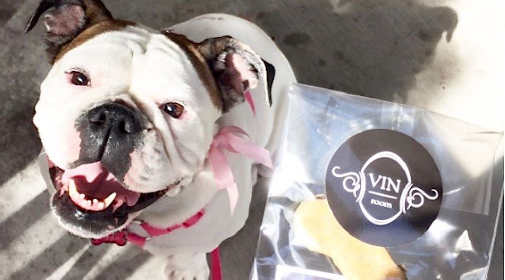 Vin Room's dog-friendly patios now open with luxury amenities for your canine