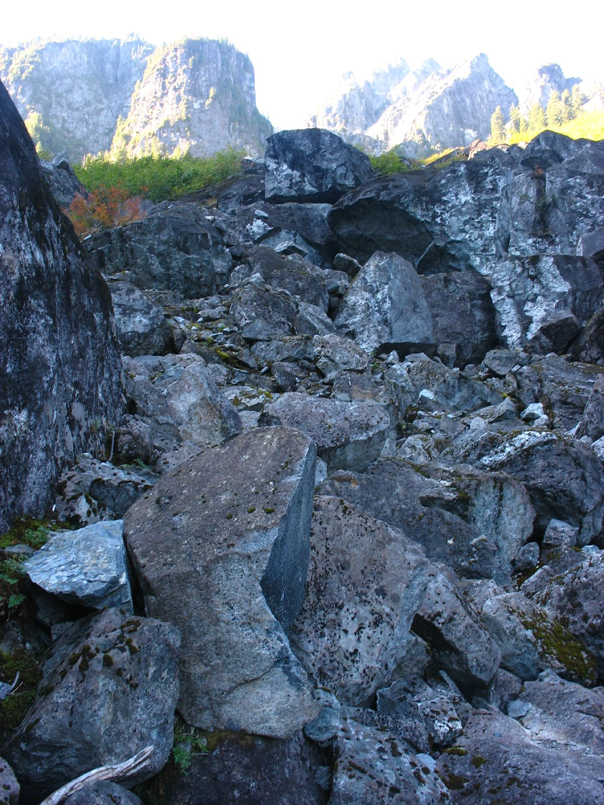The boulder field on the Hanes Valley Trail on Vancouver's North Shore (Michael Scheltgen/Flickr)