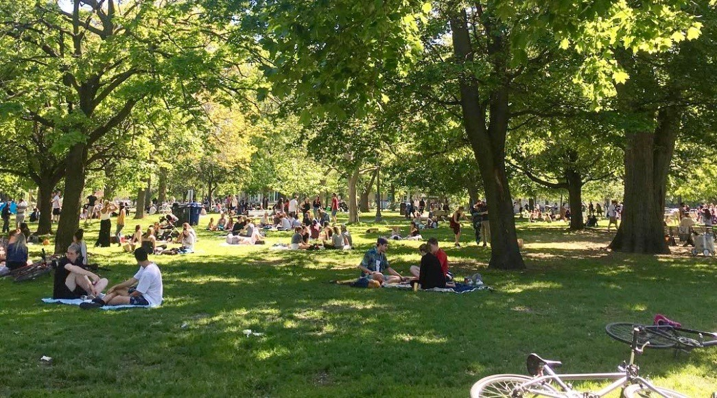 12 (annoying) rules you need to know about picnicking in Toronto parks