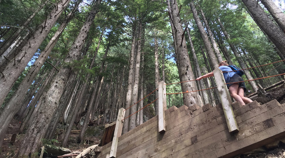 grouse grind set to finally open this saturday daily