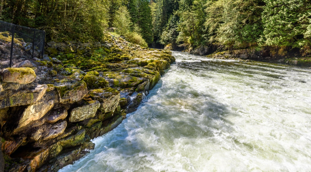 Fisherman rescued after getting stranded in fast-flowing Capilano River