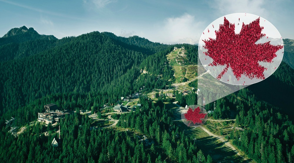 You can help make the largest maple leaf ever for a Guinness World Record