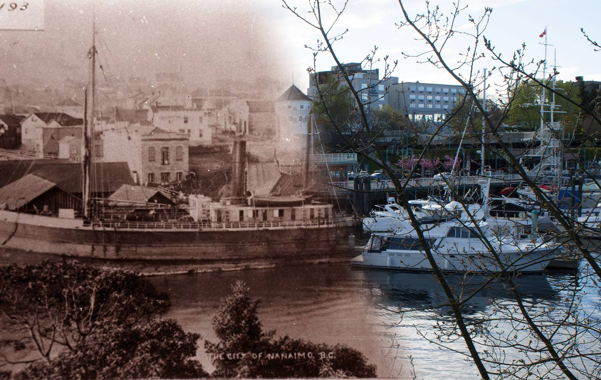 A steamer moored at the government wharf in Nanaimo in the 1880s (Nanaimo Museum/On This Spot)