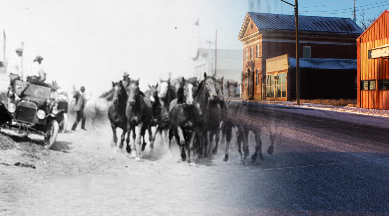 Chasinghorses 2